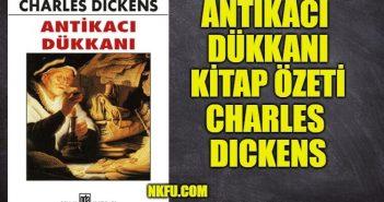 Antikacı Dükkanı Kitap Özeti, Konusu Karakterler – Charles Dickens
