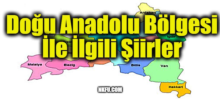Doğu Anadolu Bölgesi İle İlgili Şiirler