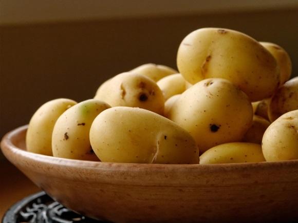 patates