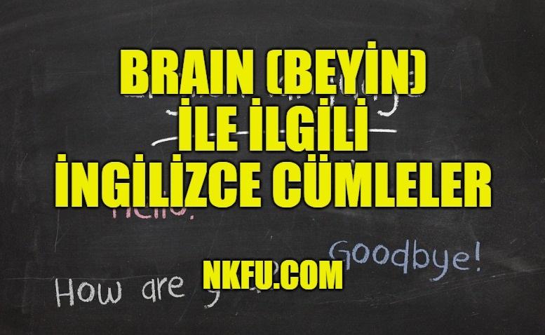 Brain Cümleler