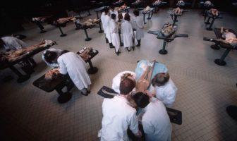 Kadavra Üzerinde Çalışan Tıp Fakültesi Öğrencileri