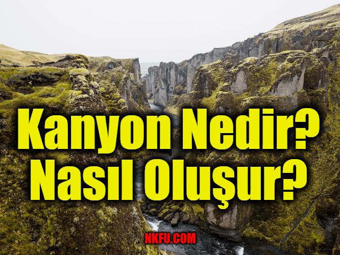Kanyon Nedir? Nasıl Oluşur?