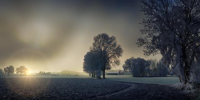 Kış Resimleri