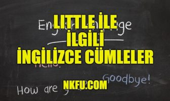 Little İle İlgili İngilizce Cümleler