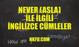 Never (Asla) İle İlgili İngilizce Cümleler