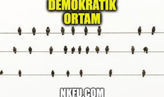 Demokratik Ortam Nedir?