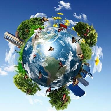 İnsanın Ekosistem Üzerindeki Etkileri - Zararları