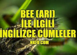 Bee (Arı) İle İlgili İngilizce Cümleler
