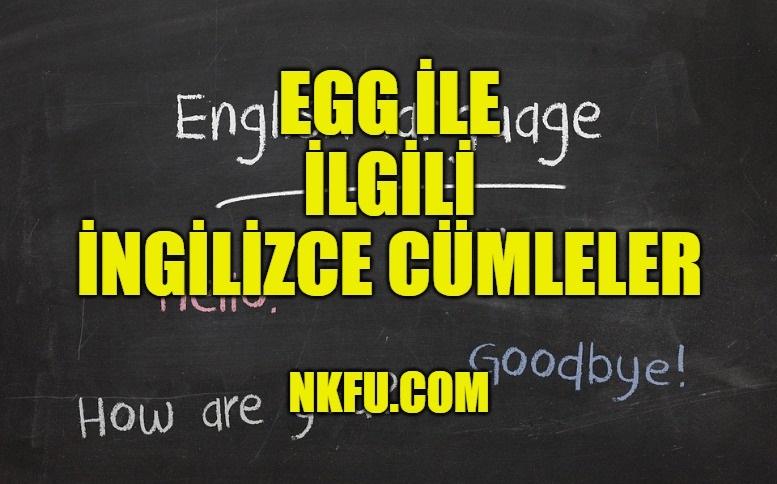 Egg (Yumurta) İle İlgili İngilizce Cümleler