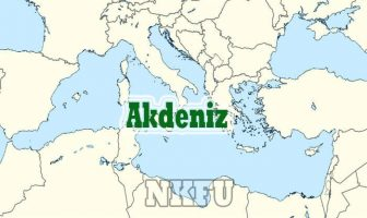 Dünya Akdeniz Haritası