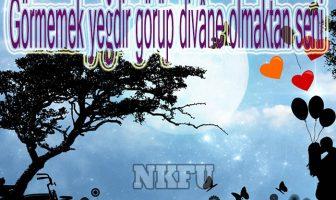Osmanlıca Aşk Sözleri
