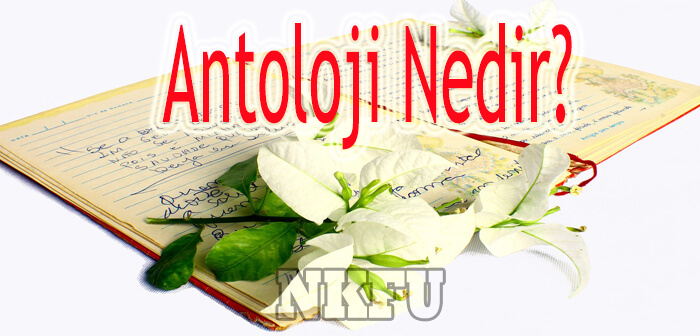 Antoloji Nedir?