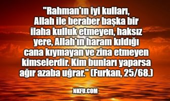 zina ayet