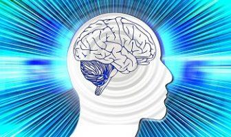Beyin ve Akıl