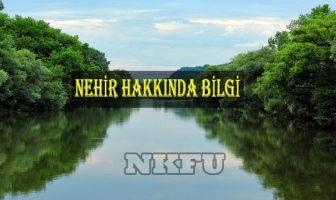 Nehir Hakkında Bilgi