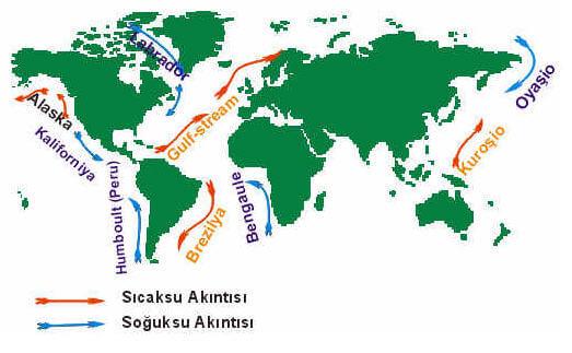 Gulf Stream – Golfstrim Sıcak Su Akıntısı Hakkında Bilgiler