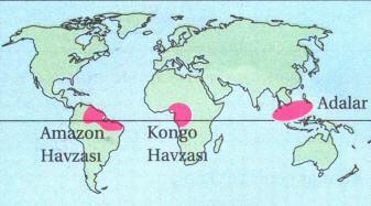ekvatoral-iklim-bolgeleri