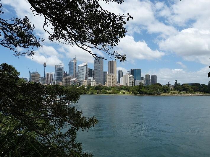 Sidney Şehrinin Görünümü