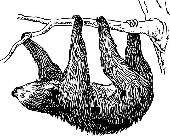 Tembel Hayvan