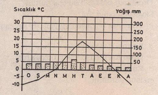 Orta kuşağın karasal ikliminde sıcaklık ve yağış