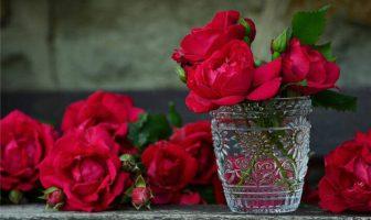 Gül Çiçekleri