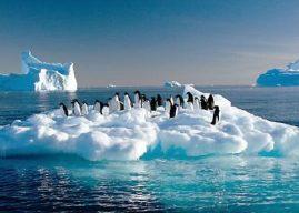 Küresel Isınmaya Karşı Alınabilecek Önlemler, Maddeler Halinde