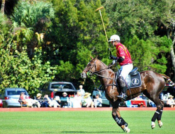 Polo Nedir? Polo Nasıl Bir Oyuncudur? Polo Nasıl Oynanır?