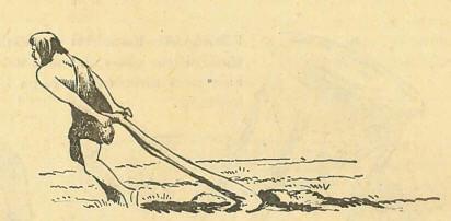 İlk insan ucu kıvrık bir dal ile toprağı sürerdi
