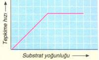 substrat-yogunlugu