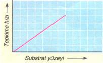 substrat-yuzeyi