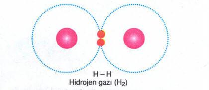 kovalent-bag-1