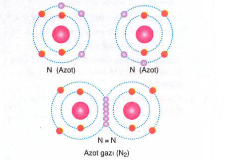 kovalent-bag-2