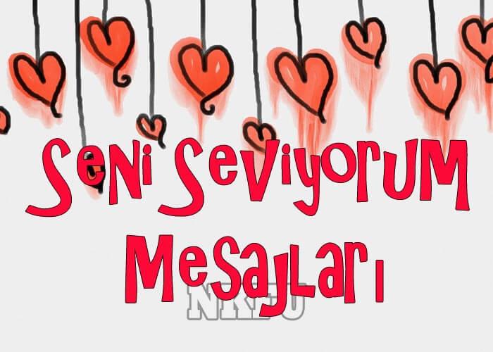 Seni Seviyorum Mesajları
