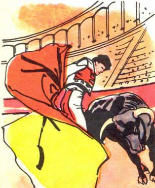 Boğa Güreşçisi