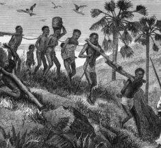 Kölelik Nedir? Tarihte Kölelik ve Kaldırılması