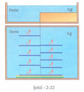 su-dalgalari-2-22