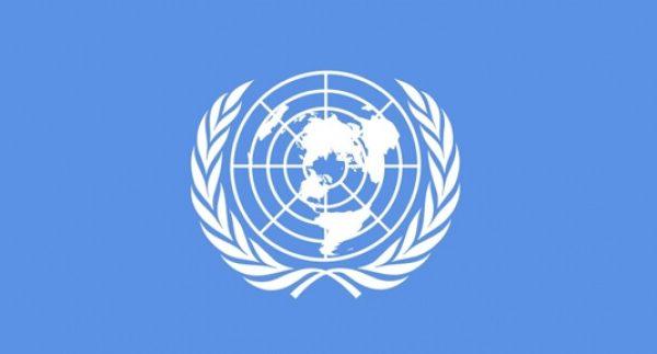 Birleşmiş Milletler Günü, Birleşmiş Milletler Teşkilatının Görevleri ve Yapısı