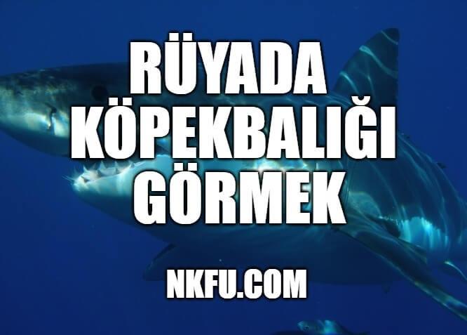 Rüyada Köpekbalığı Görmek