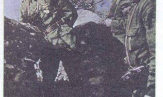 Mustafa Kemal Çanakkale Savaşında
