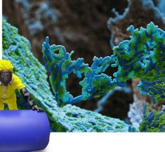 Kimyasal Maddelerin İnsan Sağlığı ve Çevre Üzerindeki Etkileri
