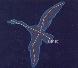 Cygnus (Kuğu) Takımyıldızı