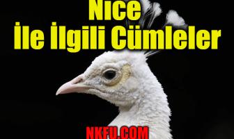 Nice İle İlgili İngilizce Cümleler