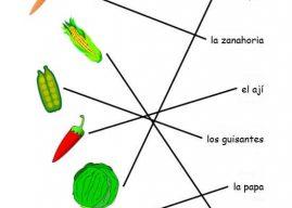 İspanyolca Sebzeler (Resimli)
