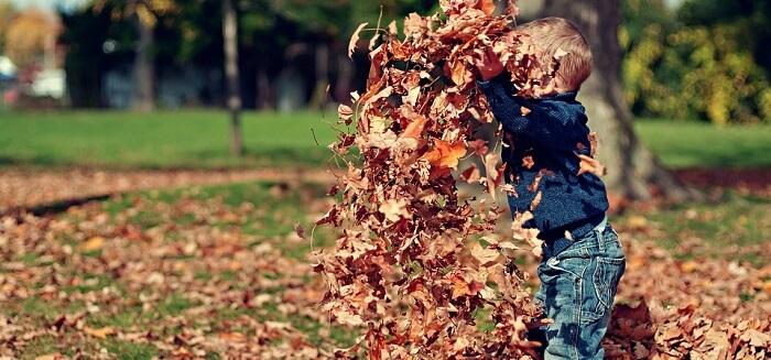 Çocuk ve Doğa