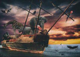 Hz. Nuh Kıssası Nedir? Hz. Nuh Kıssasının Özeti ve Çıkarılabilecek Dersler