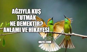 Ağzıyla Kuş Tutmak