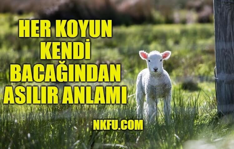 Her Koyun Kendi Bacağından Asılır