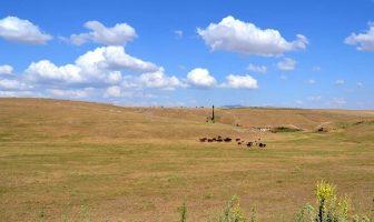 İç Anadolu Bölgesinden Bir Görünüm