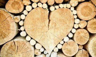 Ağaç İşleri Endüstri Mühendisliği Taban Puanları