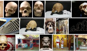 Antropoloji Taban Puanları
